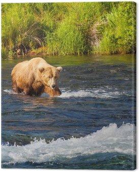 Obraz na Płótnie Posiadają na Alasce