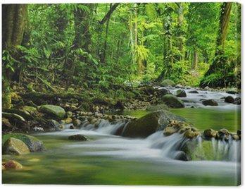 Obraz na Płótnie Potok górski
