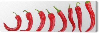 Obraz na Płótnie Red Hot Chili Peppers na białym tle