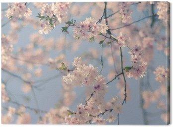 Retro Filtr Cherry Blossom