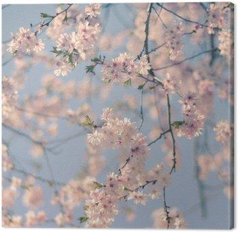 Obraz na Płótnie Retro Filtr Cherry Blossom