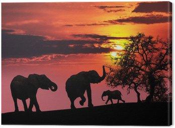 Obraz na Płótnie Rodzina słoń o zachodzie słońca