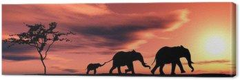 Obraz na Płótnie Rodzina słoni.