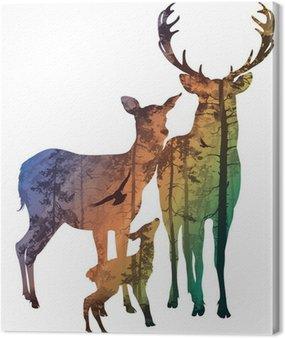 Rodziny jeleniowatych