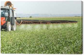 Obraz na Płótnie Rolnik w czerwonym ciągnika rozpylanie pola soi