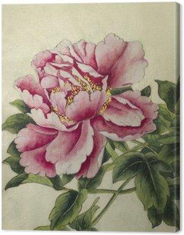 Obraz na Płótnie Różowa piwonia kwiat