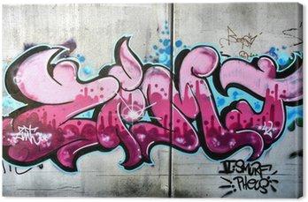 Obraz na Płótnie Różowy graffiti w Salzburg, Austria. Miejska sztuka czy wandalizm.