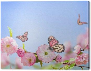 Obraz na Płótnie Różowy kwiat orientalny wiśni i motyla;