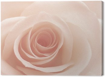 Różowy