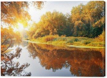 Obraz na Płótnie Rzeka w lesie jesienią wspaniałe