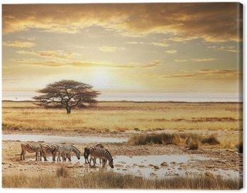 Obraz na Płótnie Safari