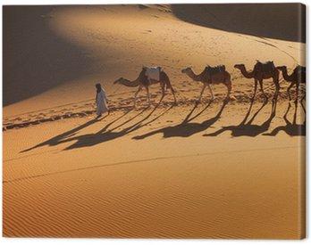 Obraz na Płótnie Sahara, Camel Ride pole, a szczęśliwi ludzie cieszący