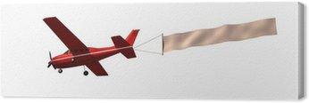 Obraz na Płótnie Samolot z komunikatem