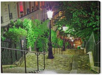 Obraz na Płótnie Schody na drodze do bazyliki Sacré-Coeur. paris.