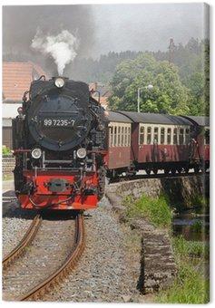 Obraz na Płótnie Selketalbahn żywica