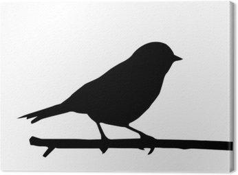 Obraz na Płótnie Silhouette małych ptaków na oddział