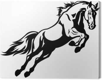 Skoki konia czarny biały