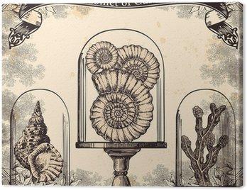 Obraz na Płótnie Skrzynię skarbów