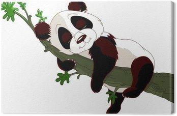 Obraz na Płótnie Sleeping Panda na gałęzi