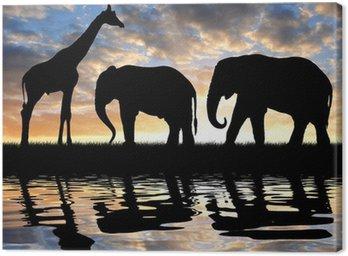 Obraz na Płótnie Słonie i żyrafy sylwetka w zachodzie słońca