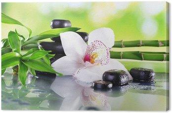Obraz na Płótnie Spa kamienie, bambus gałęzie i biały storczyk