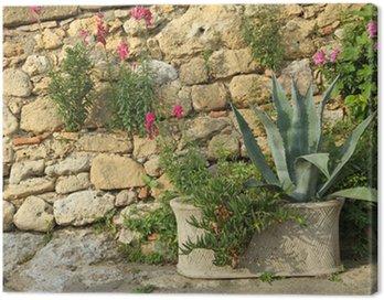 Obraz na Płótnie Śródziemnomorski ogród, Toskania