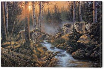 Obraz na Płótnie Stado wilków