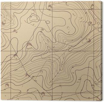 Obraz na Płótnie Streszczenie retro tle mapy topograficzne