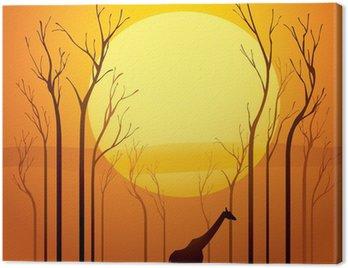 Obraz na Płótnie Suszone drzewa w zachodzie słońca