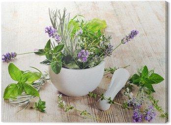Obraz na Płótnie Świeże zioła
