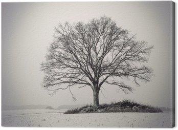 Obraz na Płótnie Sylwetka drzewa dębowego