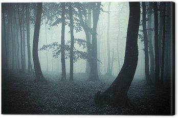 Obraz na Płótnie Sylwetki drzew w ciemnym lesie