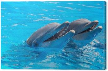 Obraz na Płótnie Szczęśliwe delfiny