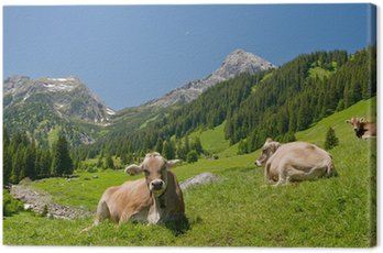 Obraz na Płótnie Szczęśliwe Krowy