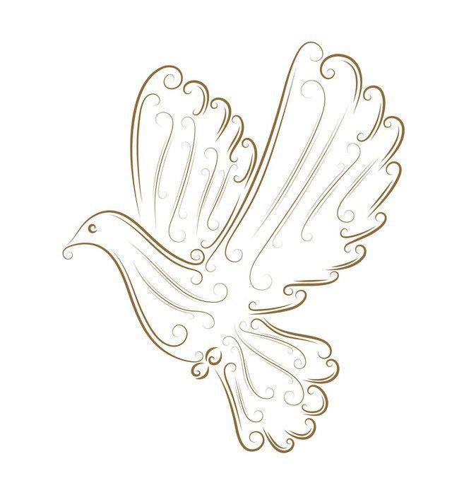 Obraz na Płótnie Szkic gołębia - Ptaki