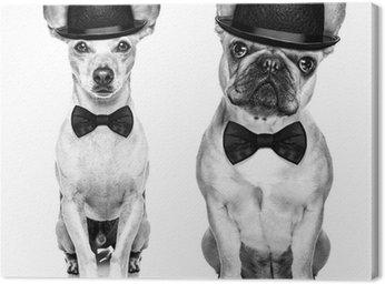 Obraz na Płótnie Szkła Zabawna pies