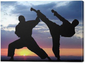 Obraz na Płótnie Sztuka walki