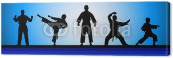 Obraz na Płótnie Sztuki walki - 20