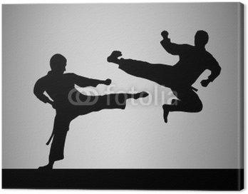 Obraz na Płótnie Taekwondo - 1