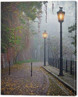 Obraz na Płótnie Tajemnicze alejki w mglisty czasie jesieni z lampami zapalonymi