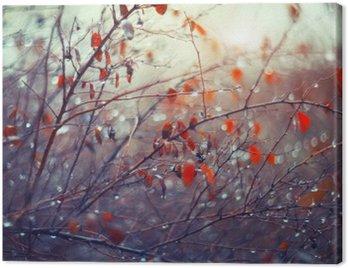 Obraz na Płótnie Tło z gałęzi i deszczem