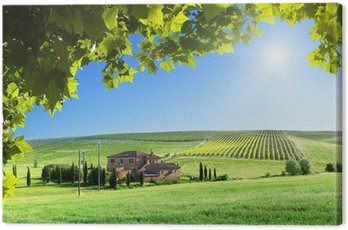 Obraz na Płótnie Toskania krajobraz z typowym wiejskim domu