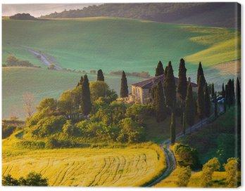 Obraz na Płótnie Toskania rano w Val d'Orcia