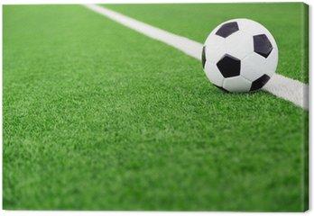 Obraz na Płótnie Tradycyjna piłka na boisku piłkarskim