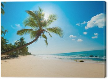 Obraz na Płótnie Tropikalna plaża