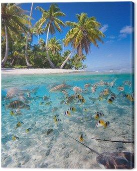 Obraz na Płótnie Tropikalna wyspa