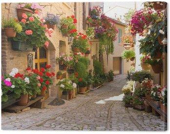 Obraz na Płótnie Uliczka z kwiatami, Spello