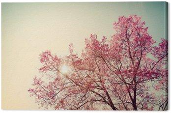 Obraz na Płótnie Vintage wiśni - sakura kwiat. charakter tła (filtr retro efekt kolorystyczny)