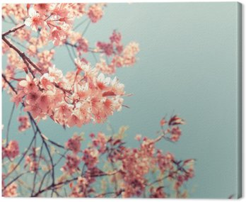 Vintage wiśni - sakura kwiat. charakter tła (filtr retro efekt kolorystyczny)