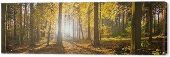 Obraz na Płótnie Waldlichtung